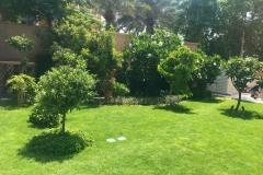 Palm Jumeira Villa lawn