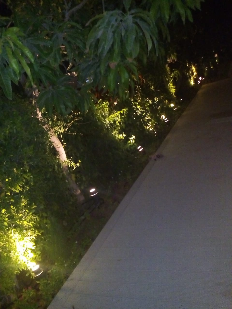Nightscaping & landscaping lighting