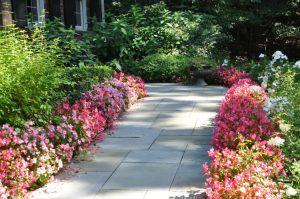 slate-walkways-bluebird-blog