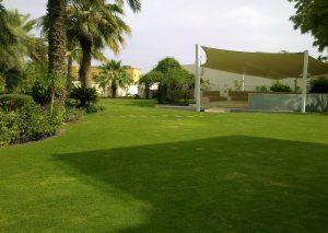 Lawn Villa