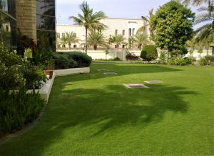 picture of Lawn-Villa