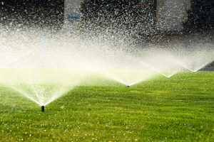 Sprinkle Irrigation
