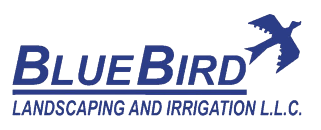 Blue Bird Landscaping and Irrigation, Dubai | UAE